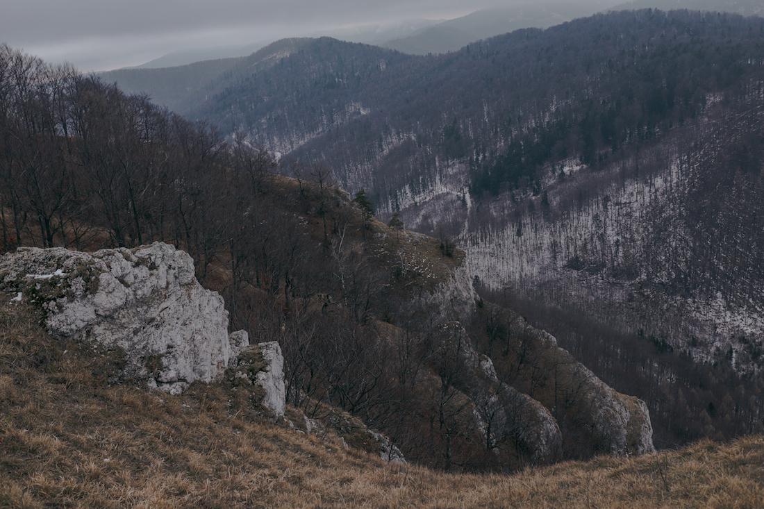 Photo: Sasha Keselicova